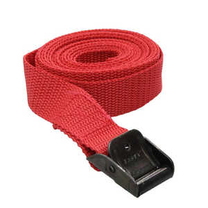 Fasty 2.5m x 25mm Red 400kg AgBoss Fasty Tie-Down Strap