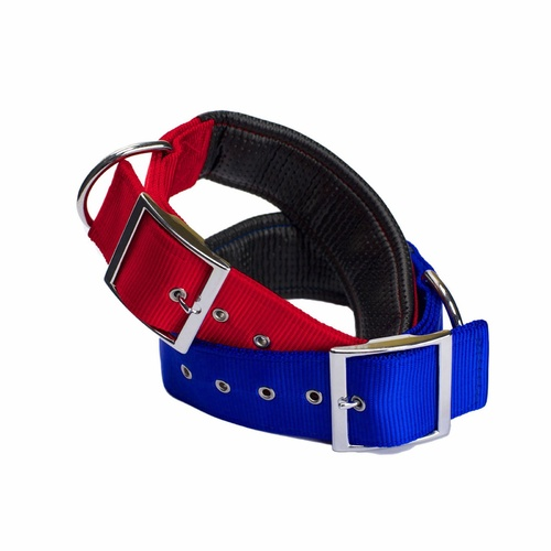 AgBoss Nylon Padded Dog Collars