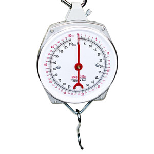 AgBoss 25kg Hanging Clock Face Scales